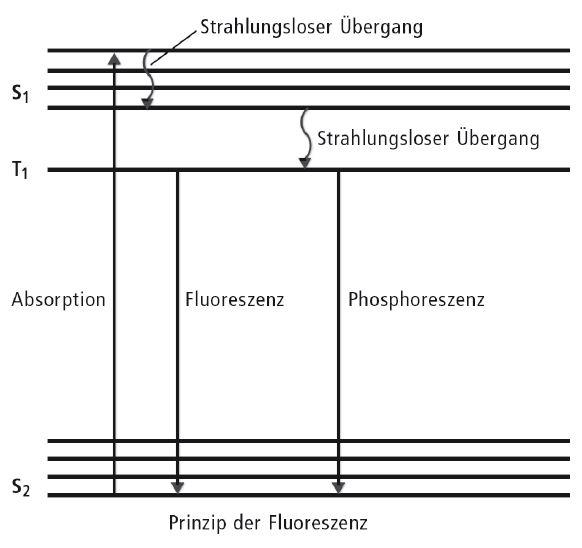 Fluoreszenz_Polymer02