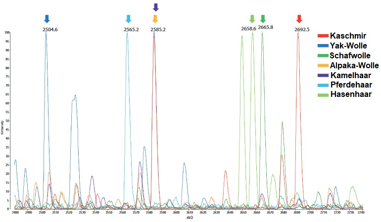 Tierhaare-Chromatogramm
