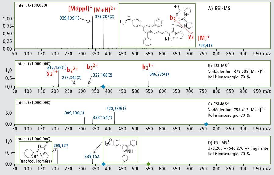 msn-Analyse-Peptide01