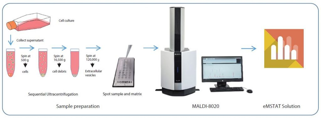 Proteinprofiling-Krebszellen_01