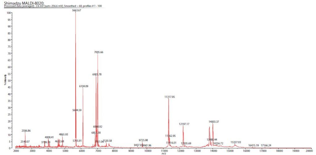 Proteinprofiling-Krebszellen_02