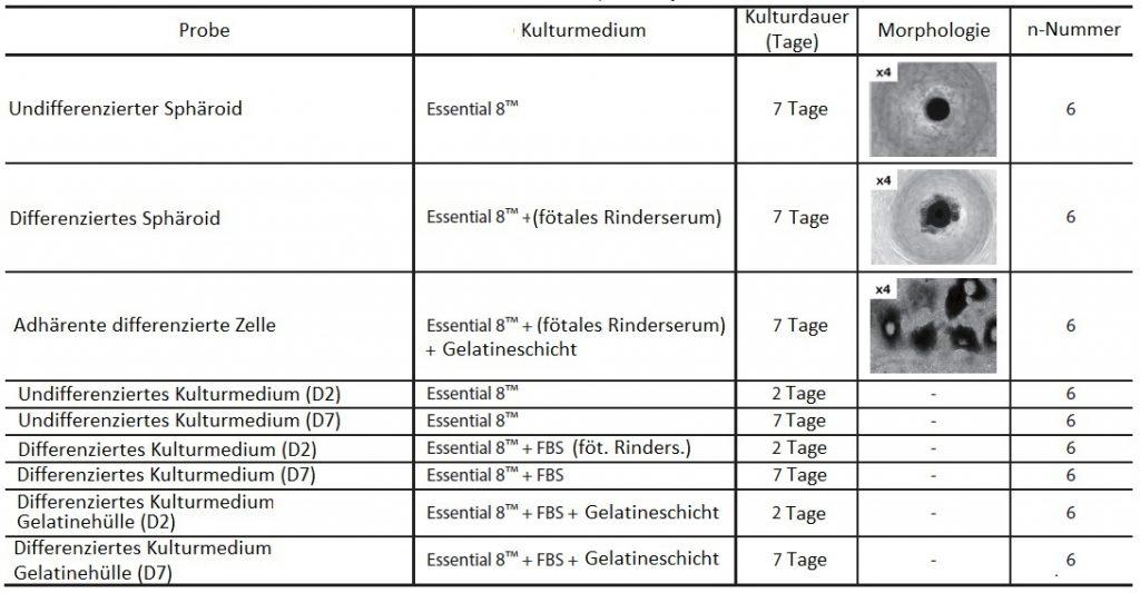 kultivierte-Zellen_MALDI_01_v2
